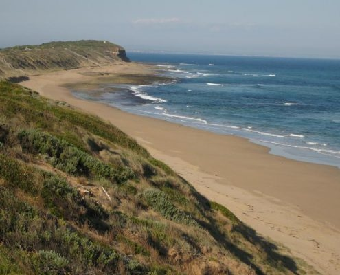 barwon heads back beach